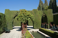 Alhambra Generalife Lower Gardens Cypresses Granada Spain 12655